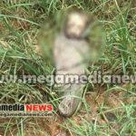 Talapady Infant Killed