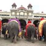 6 Dasara Elephants arrived to Mysore city