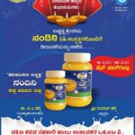 Nandini Milk products